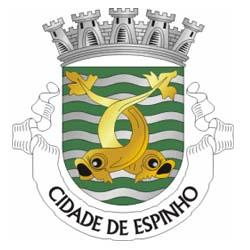 Câmara de Espinho